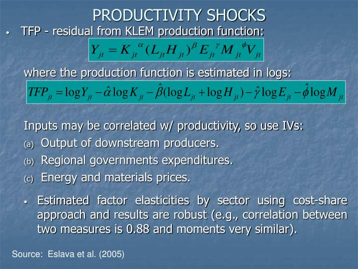 PRODUCTIVITY SHOCKS