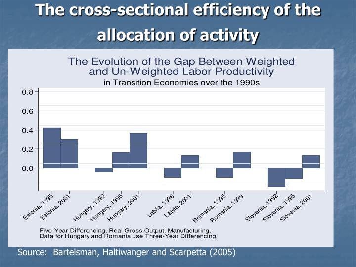 The cross-sectional efficiency of the allocation of activity