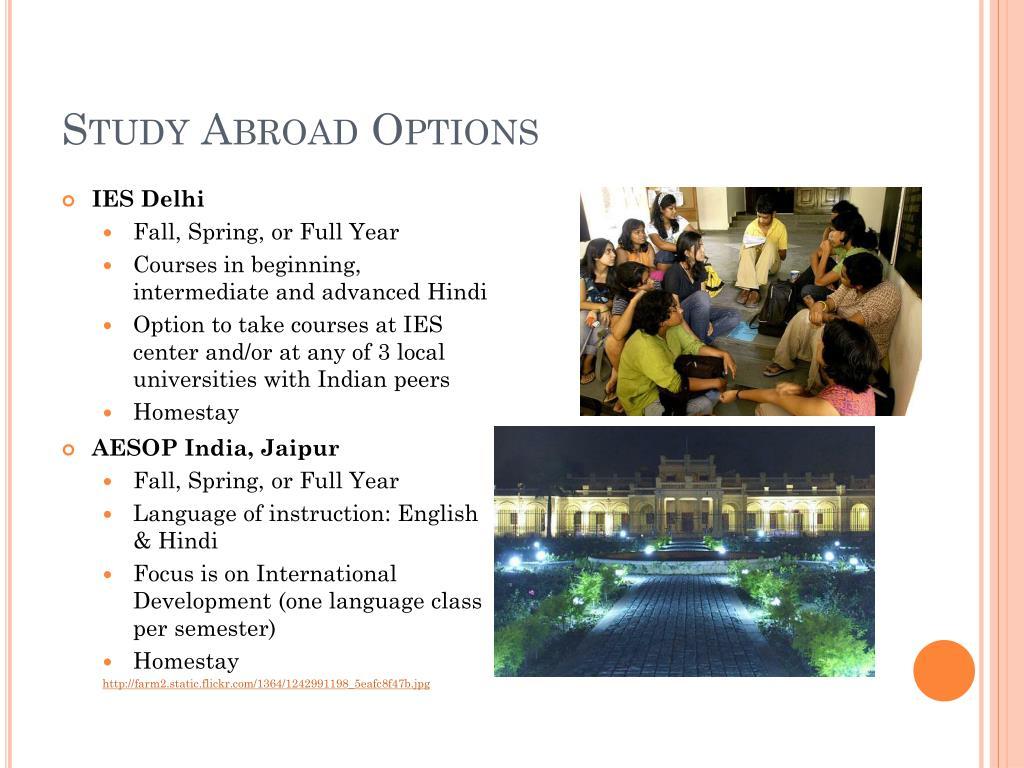 Study Abroad Options
