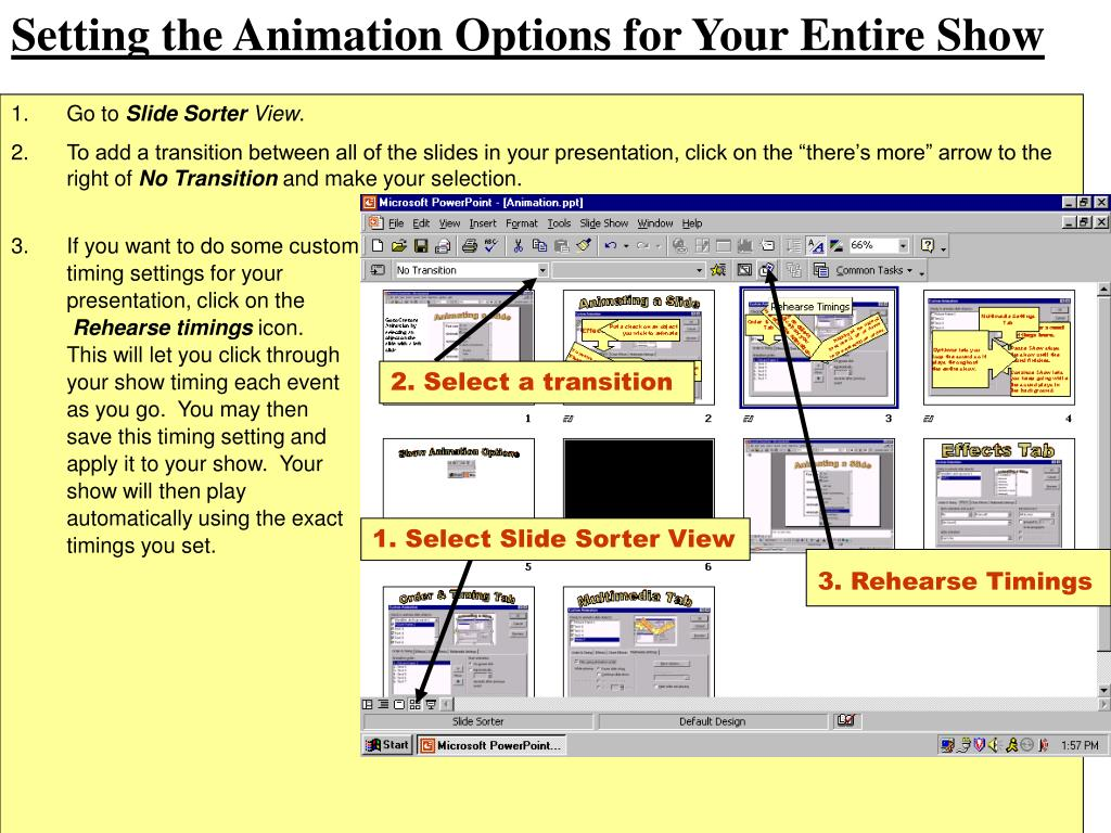 Setting the Animation Options for Your Entire Show