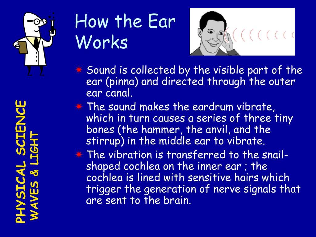 How the Ear