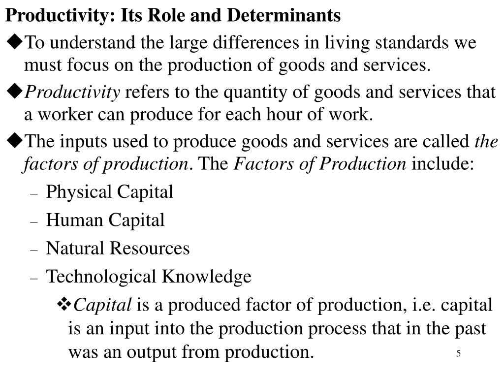 Productivity: Its Role and Determinants