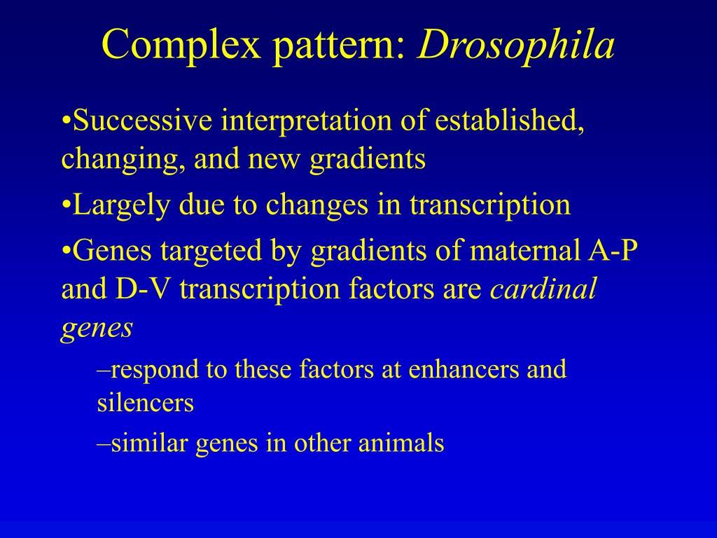 Complex pattern: