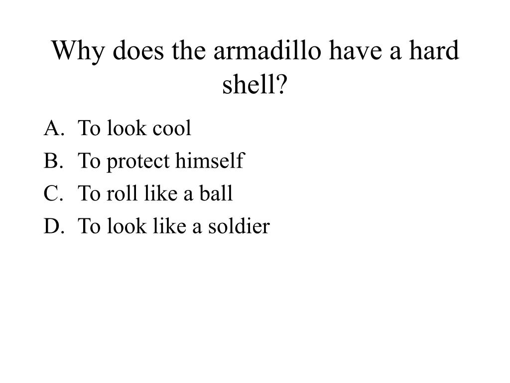 Why does the armadillo have a hard shell?