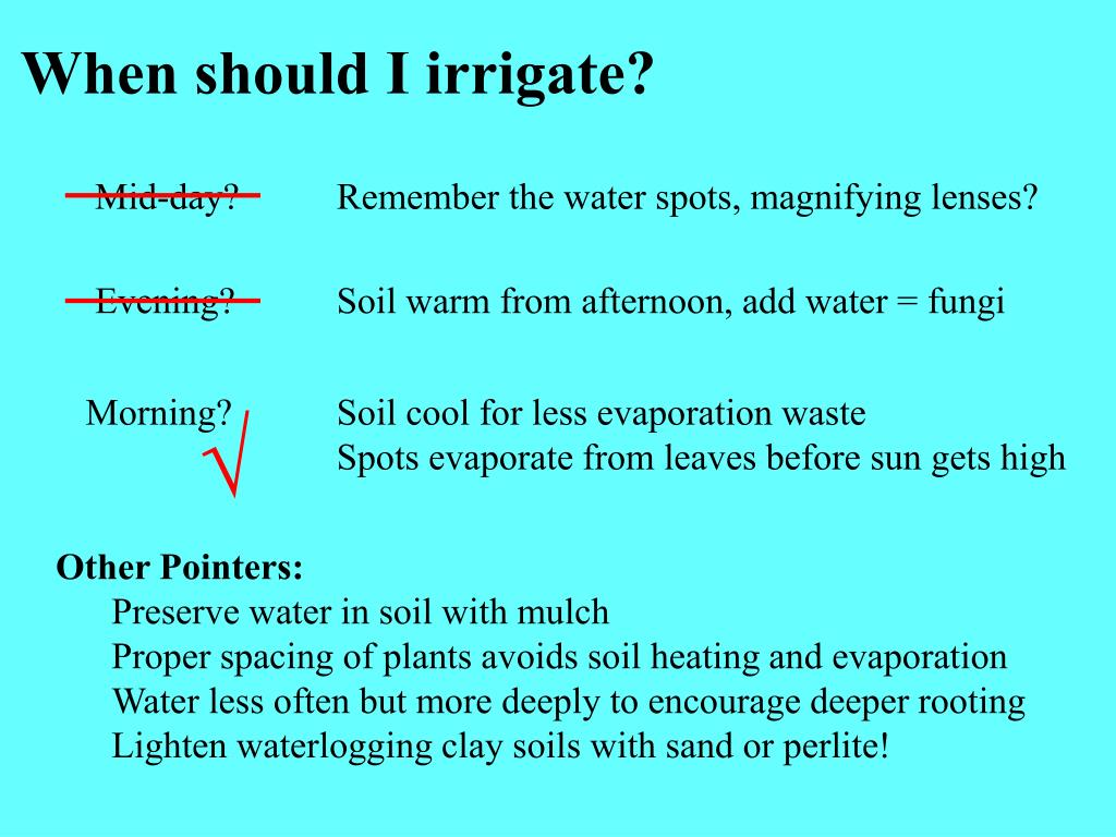 When should I irrigate?