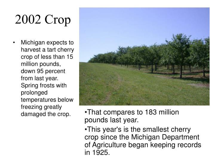 2002 Crop