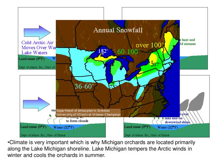 Climate is very important which is why Michigan orchards are located primarily along the Lake Michigan shoreline. Lake Michigan tempers the Arctic winds in winter and cools the orchards in summer.