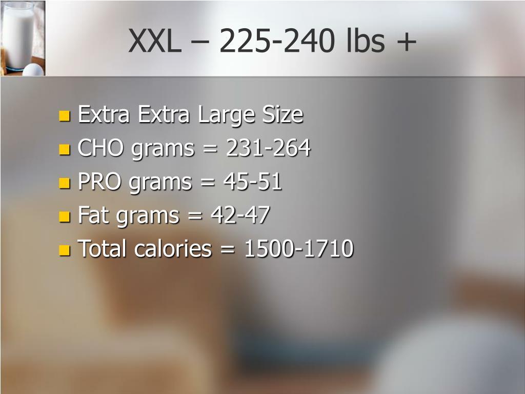 XXL – 225-240 lbs +