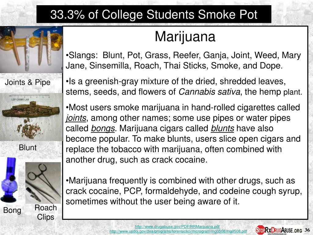 33.3% of College Students Smoke Pot