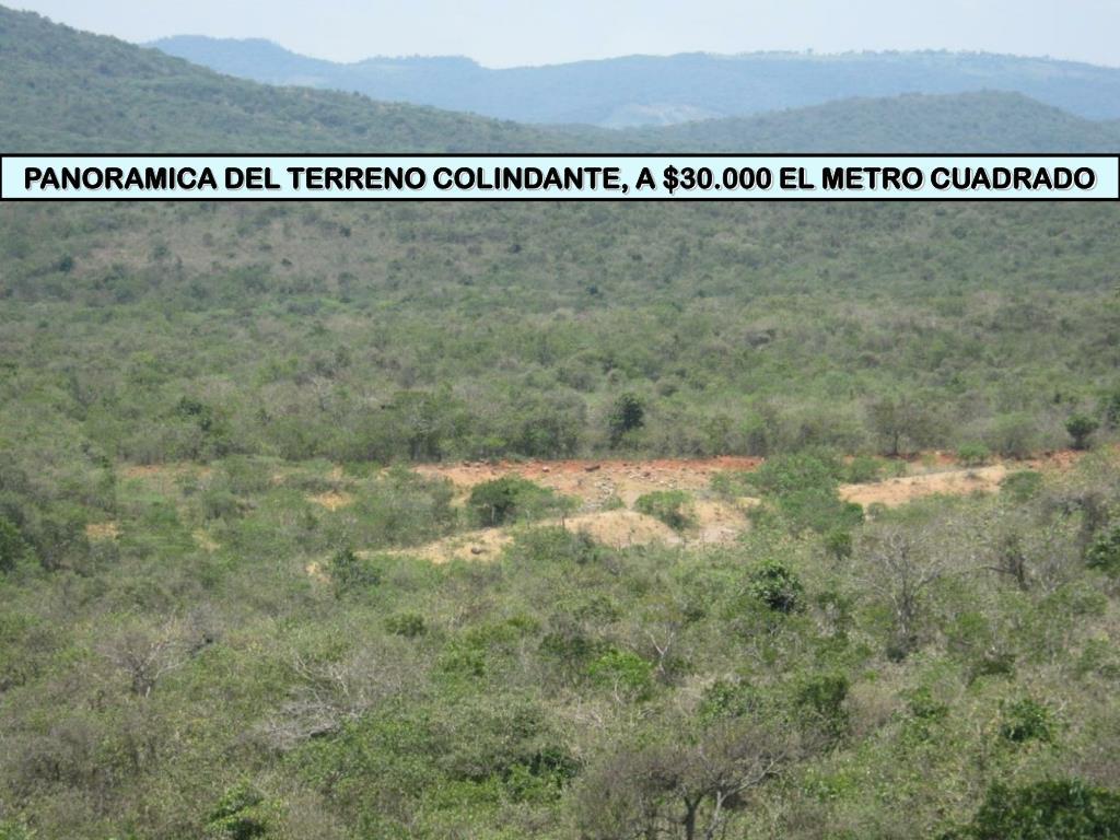 PANORAMICA DEL TERRENO COLINDANTE, A $30.000 EL METRO CUADRADO