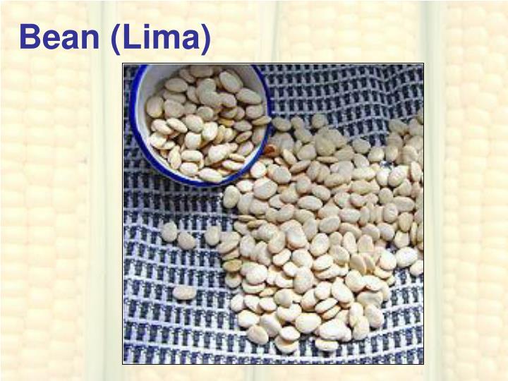 Bean (Lima)