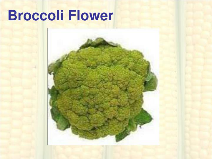 Broccoli Flower