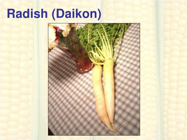 Radish (Daikon)
