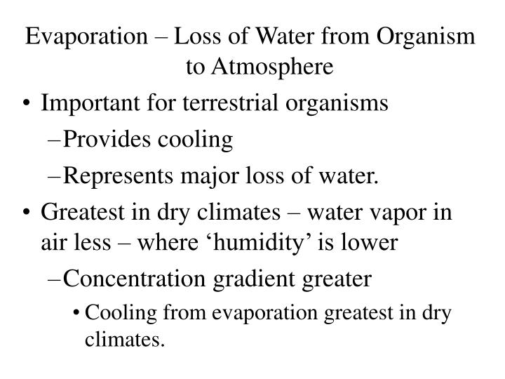 Evaporation – Loss of Water from Organism to Atmosphere