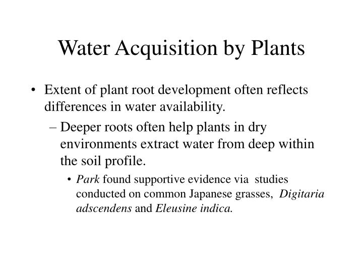 Water Acquisition by Plants