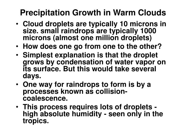 Precipitation Growth in Warm Clouds