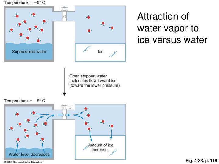 Attraction of water vapor to ice versus water