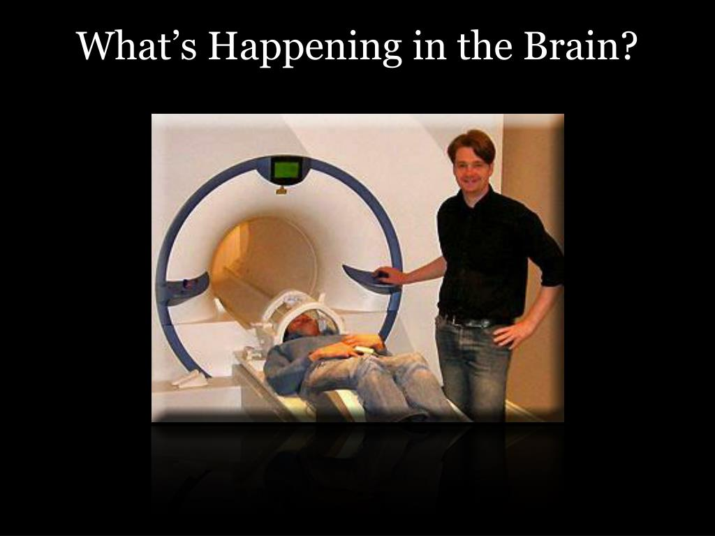 What's Happening in the Brain?
