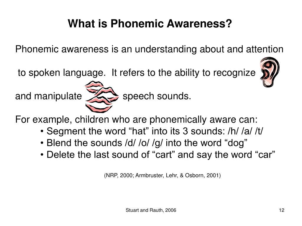 What is Phonemic Awareness?