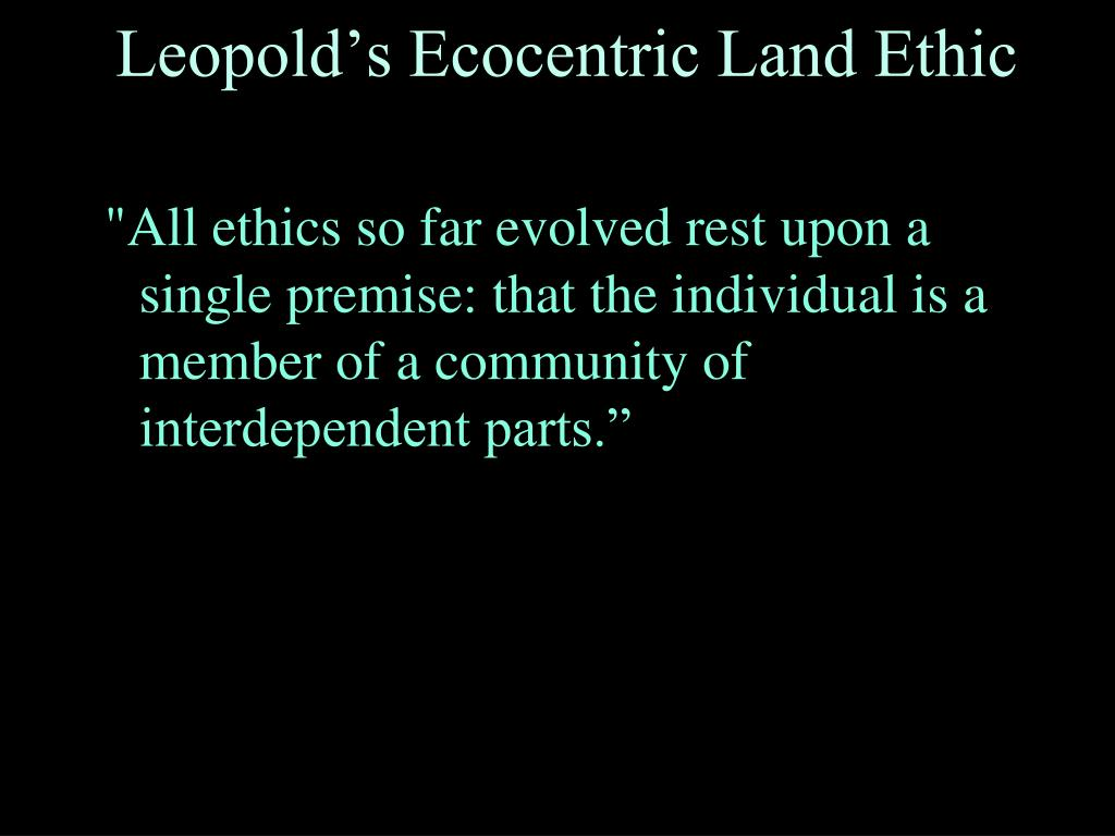 """""""All ethics so far evolved rest upon a single premise: that the individual is a member of a community of interdependent parts."""""""