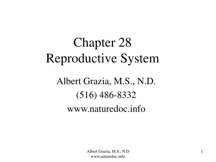 Chapter 28 reproductive system