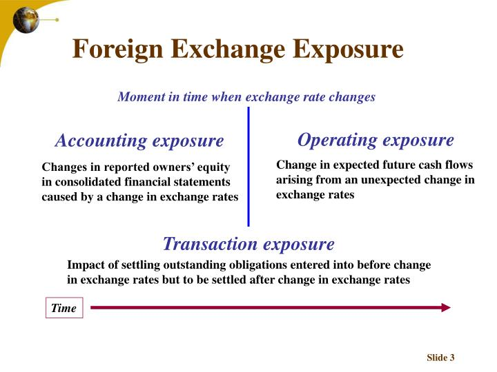 Foreign exchange exposure3