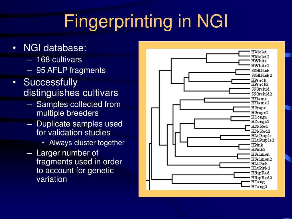 Fingerprinting in NGI