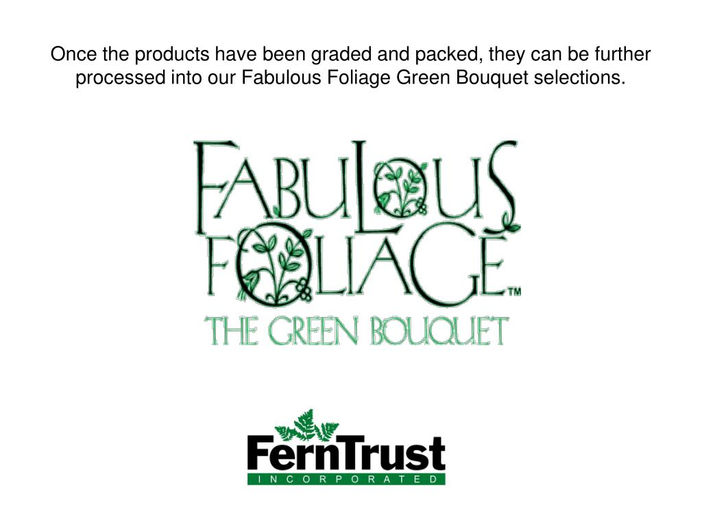 Once the products have been graded and packed, they can be further processed into our Fabulous Foliage Green Bouquet selections.