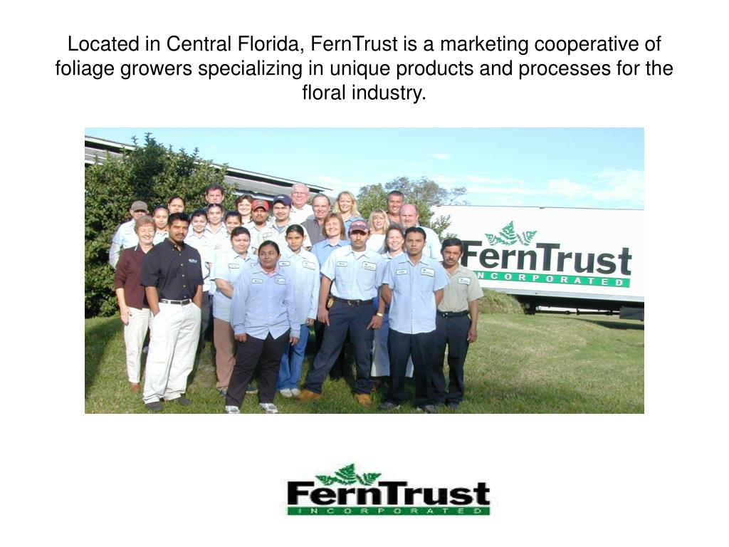 Located in Central Florida, FernTrust is a marketing cooperative of foliage growers specializing in unique products and processes for the floral industry.