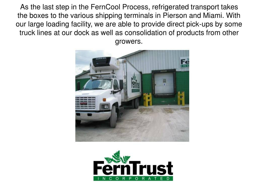 As the last step in the FernCool Process, refrigerated transport takes the boxes to the various shipping terminals in Pierson and Miami. With our large loading facility, we are able to provide direct pick-ups by some truck lines at our dock as well as consolidation of products from other growers.