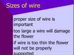 sizes of wire12