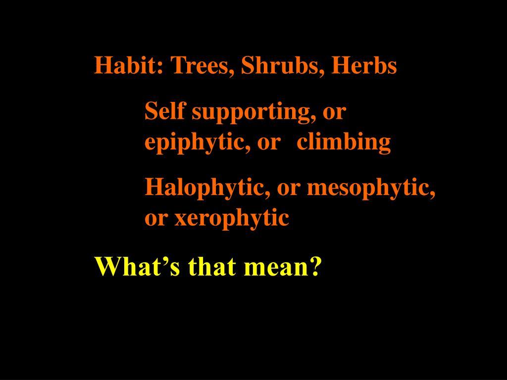 Habit: Trees, Shrubs, Herbs