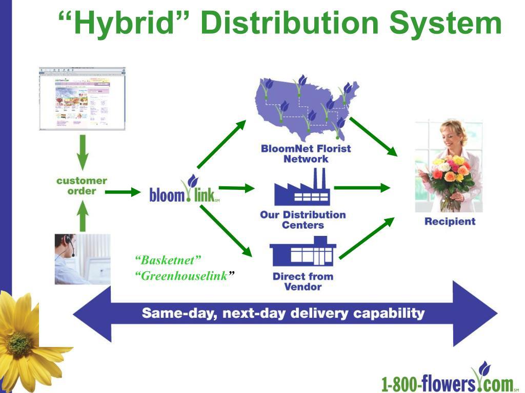 """Hybrid"" Distribution System"