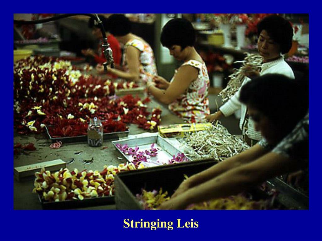Stringing Leis