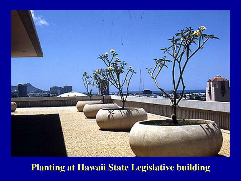 Planting at Hawaii State Legislative building
