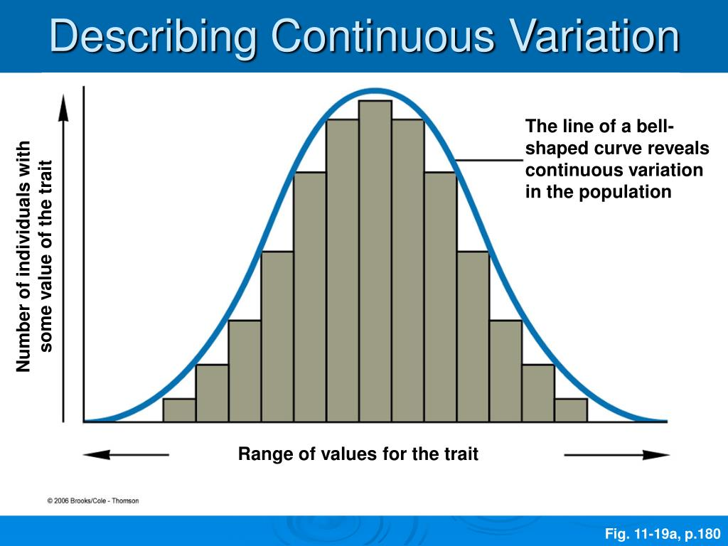 Describing Continuous Variation