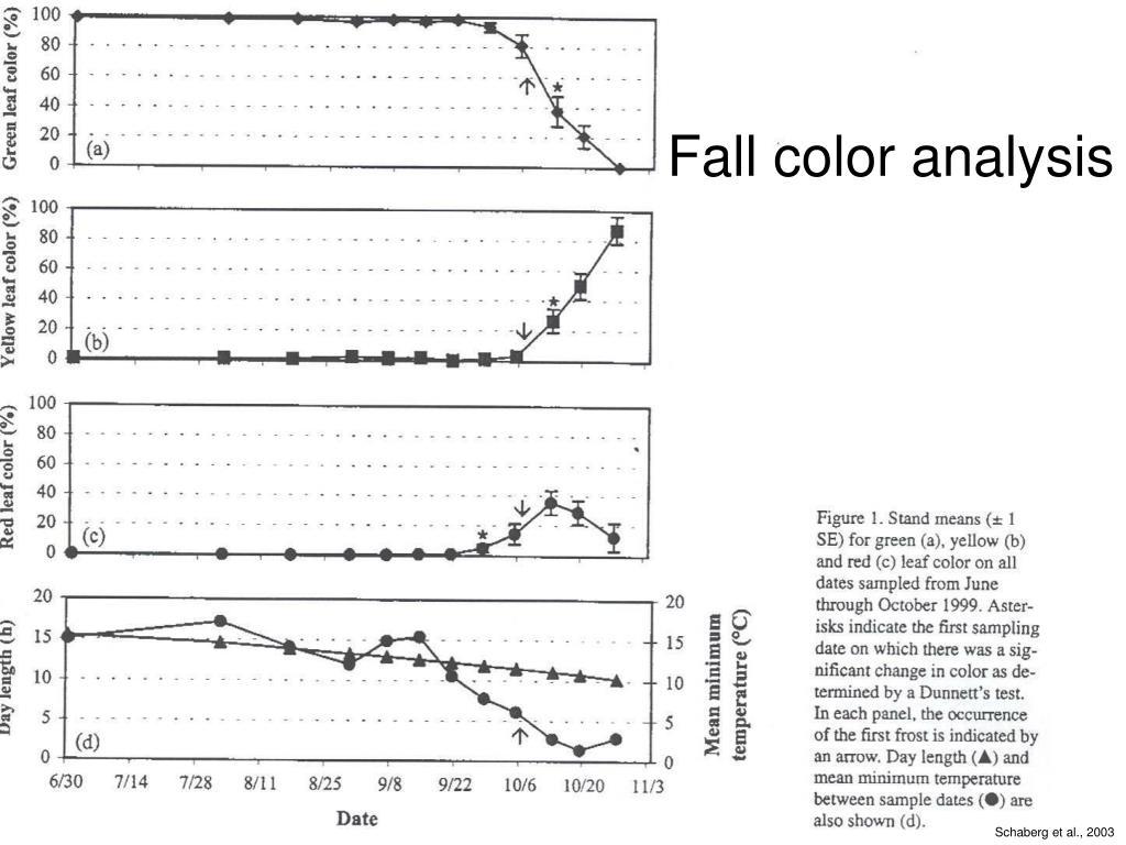 Fall color analysis