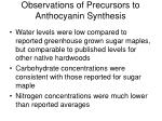 observations of precursors to anthocyanin synthesis