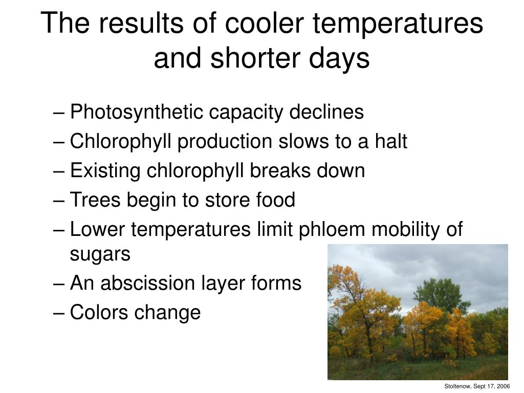 The results of cooler temperatures and shorter days