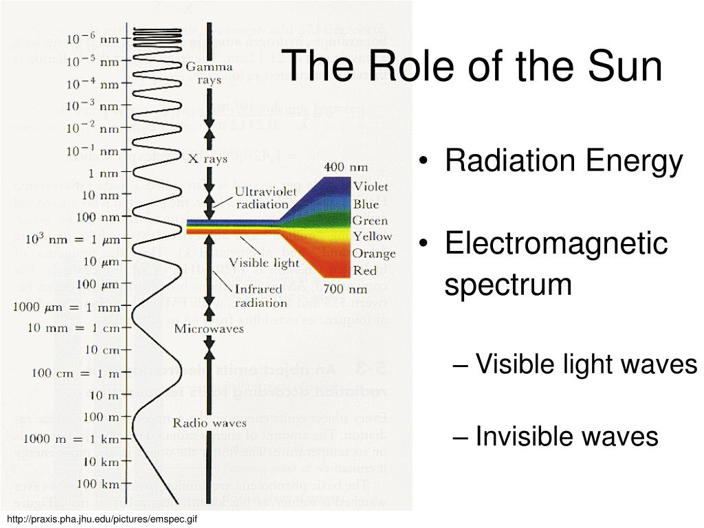 The Role of the Sun