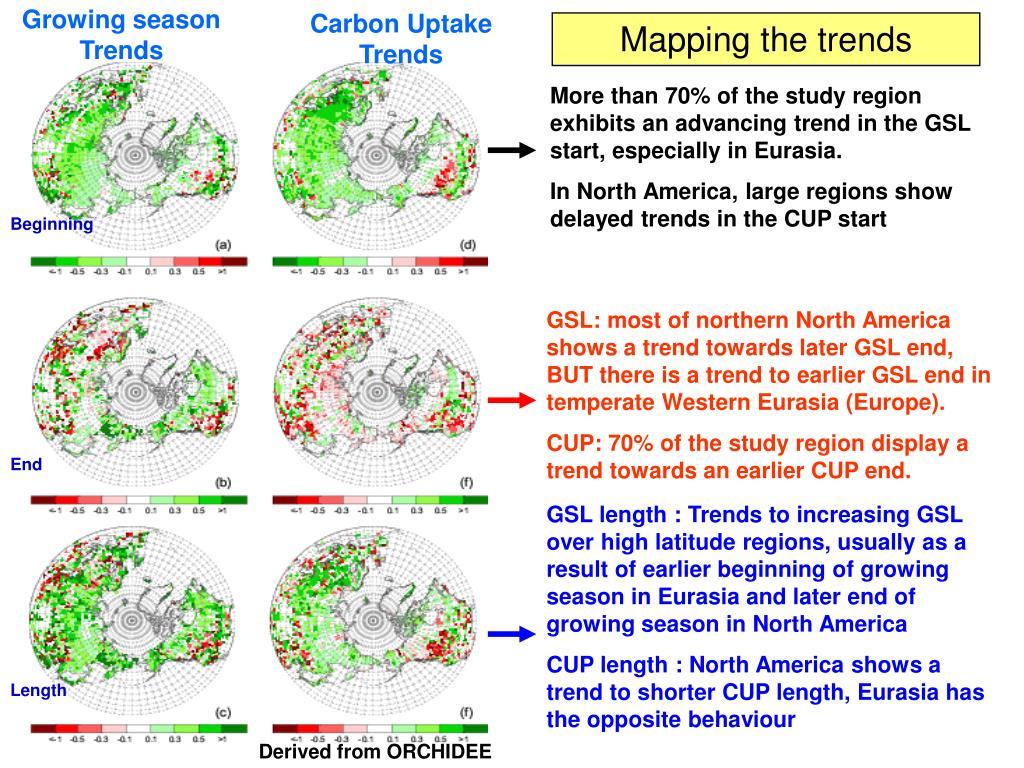 Carbon Uptake Trends