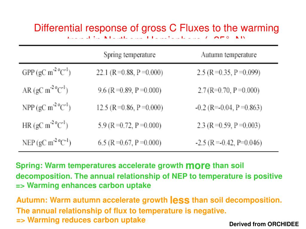 Differential response of gross C Fluxes to the warming trend in Northern Hemisphere (>25°N)