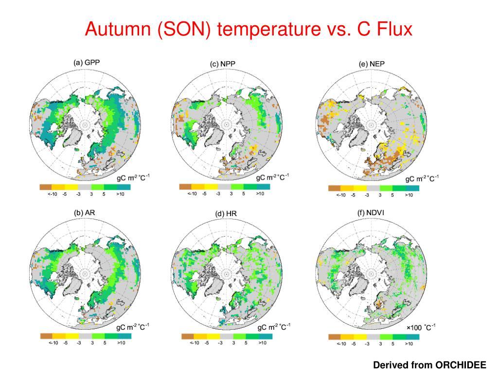 Autumn (SON) temperature vs. C Flux