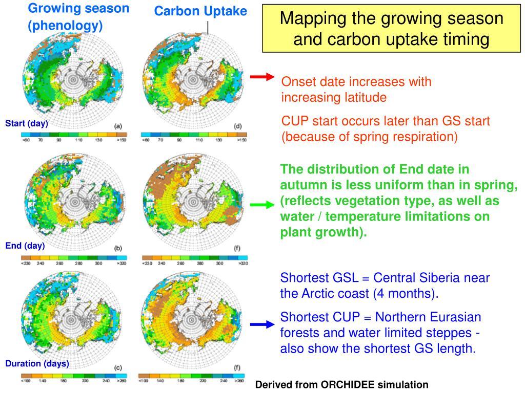 Carbon Uptake