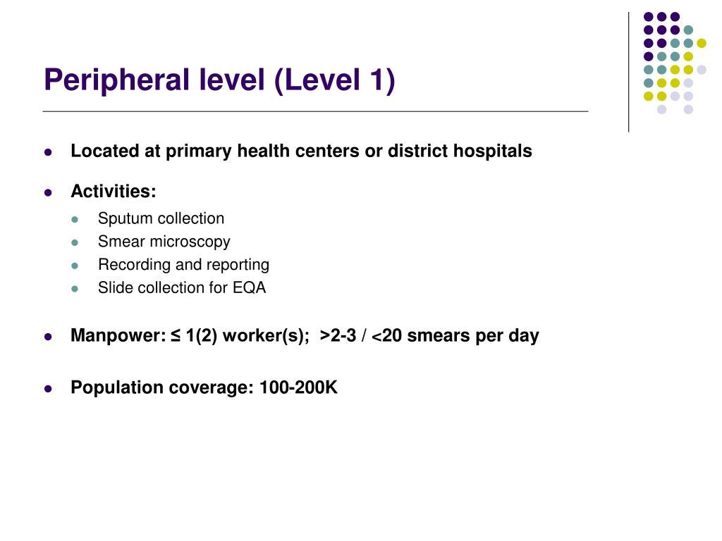 Peripheral level (Level 1)