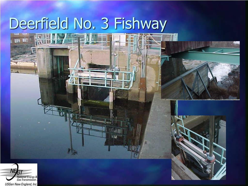 Deerfield No. 3 Fishway