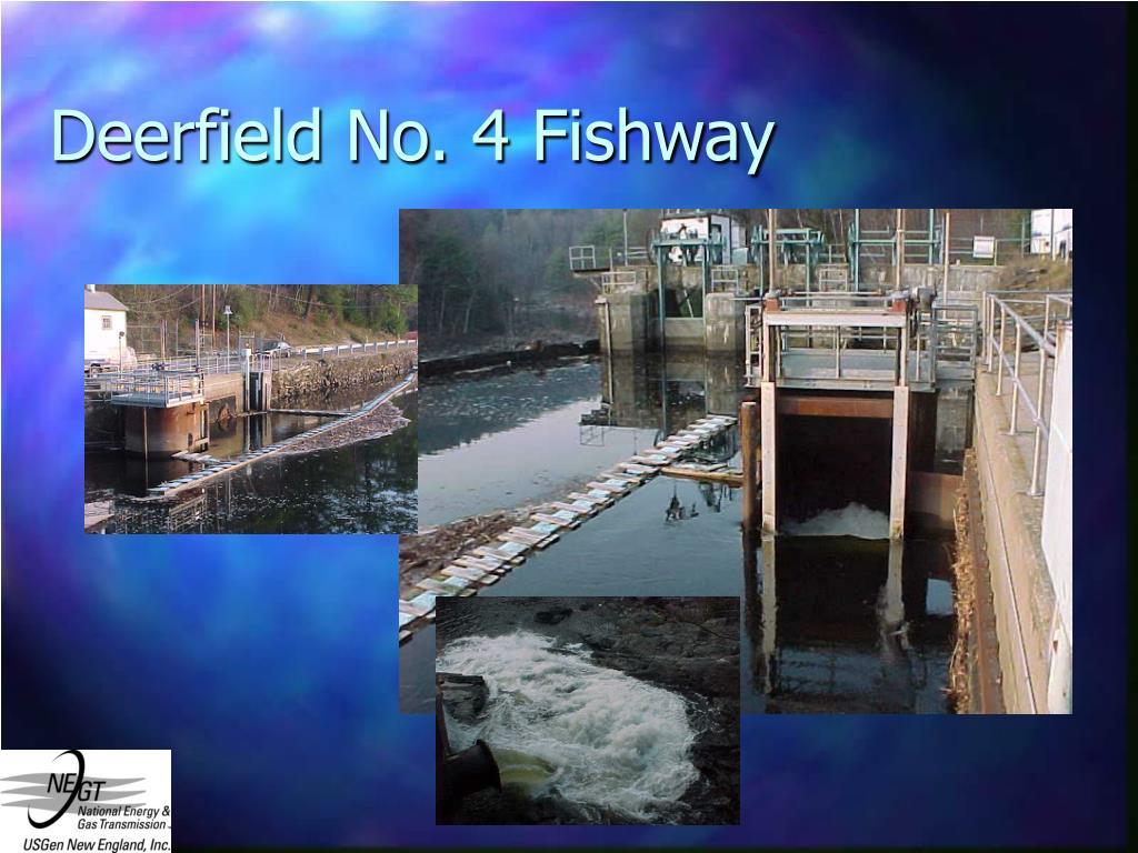 Deerfield No. 4 Fishway