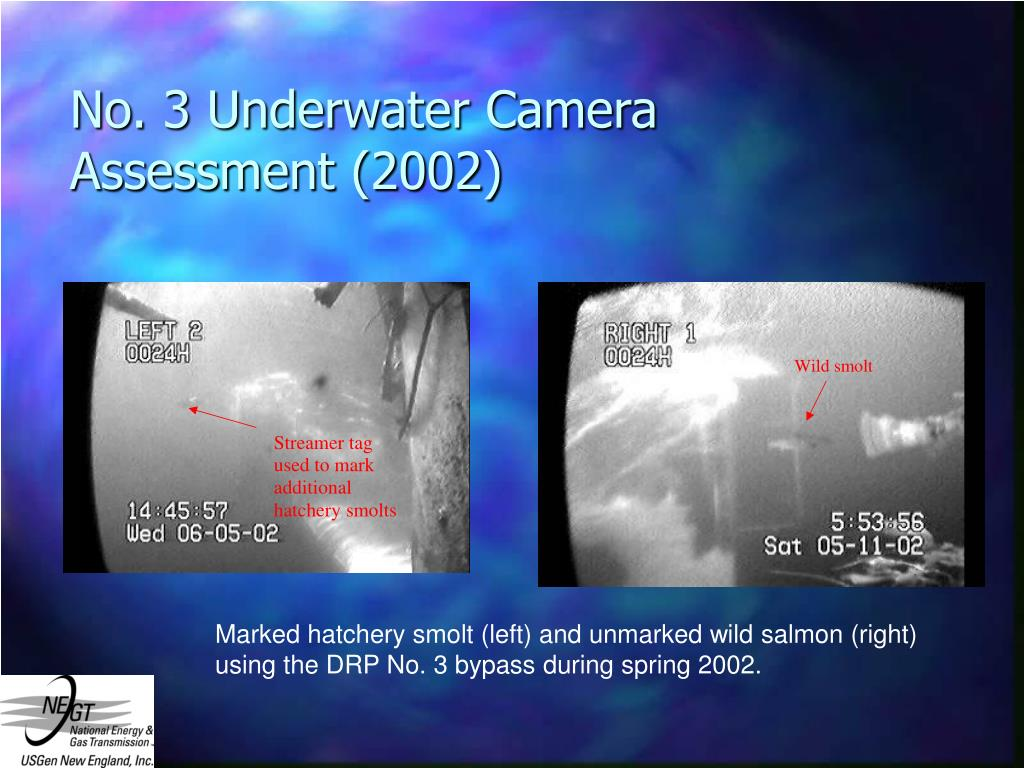 No. 3 Underwater Camera Assessment (2002)