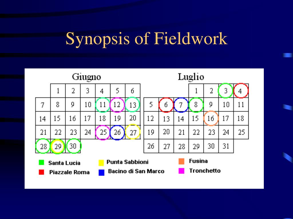 Synopsis of Fieldwork