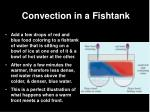 convection in a fishtank